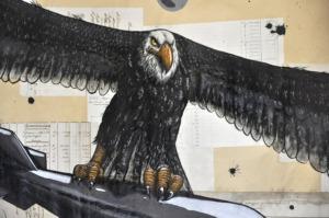 Bombing eagle_dettaglio (1)
